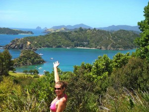 Bay of Islands - cruise ship tours