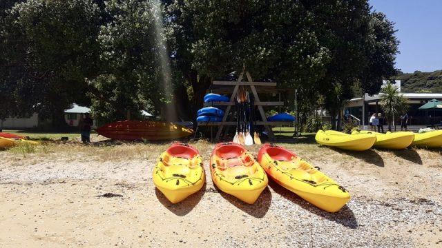 paddle-board-rental-paihia-nz