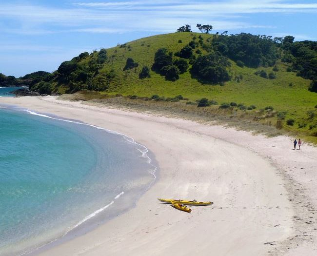 Island Escape Kayaking Tour