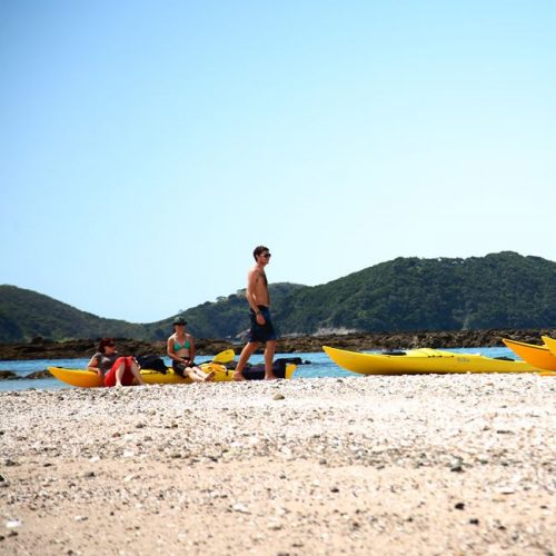 Sea Kayak Hire - Bay of Islands